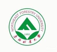 东北林业大学自考艺术设计专科一年半毕业只统考2科吗